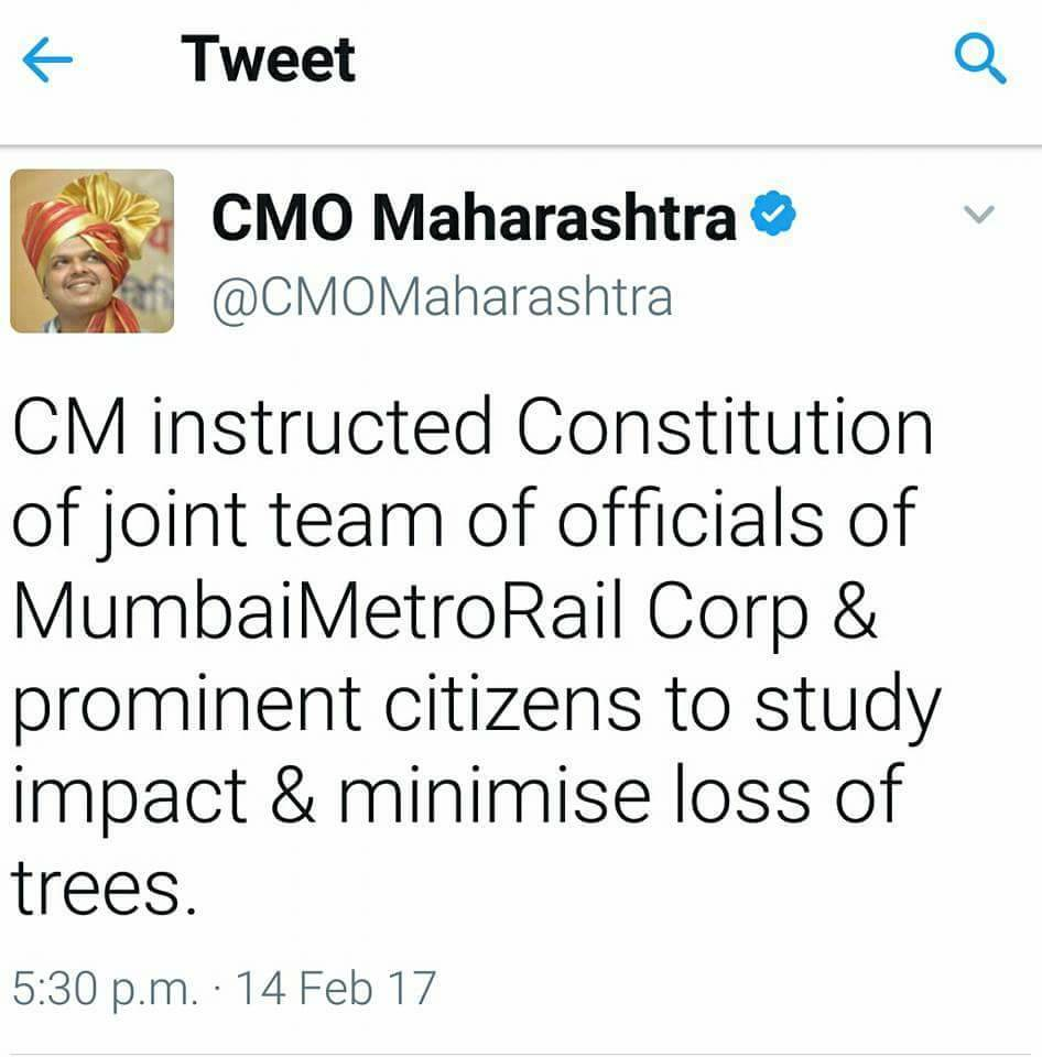 CMO tweeted about tree cutting on February 14