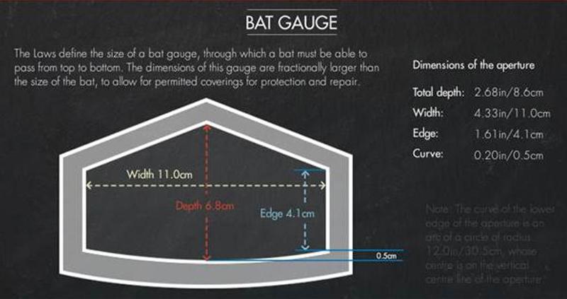 bat-info