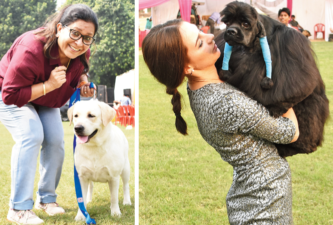 THAT'S CRAZY FOR YOU: Enakshi Chandel with her Lab (R) Kareena with Liam, an American Cocker Spaniel (BCCL/ Farhan Ahmad Siddiqui)