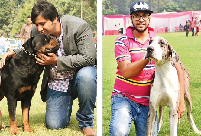 Surinder Gill poses with his Rottweiler Percy (R) Shivam with his Great Dane Dannie (BCCL/ Farhan Ahmad Siddiqui)