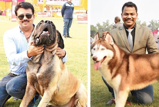 Siddhartha Sharma with his English Mastiff, Scar (R) Vikram Singh with his pet Madras (BCCL/ Farhan Ahmad Siddiqui)