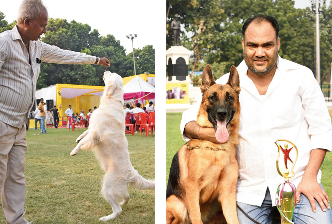 Playtime for Suzie, a Golden Retriever (R) Brandy, a German Shepherd, poses proudly with her trophy and her owner Amit Sharma (BCCL/ Farhan Ahmad Siddiqui)