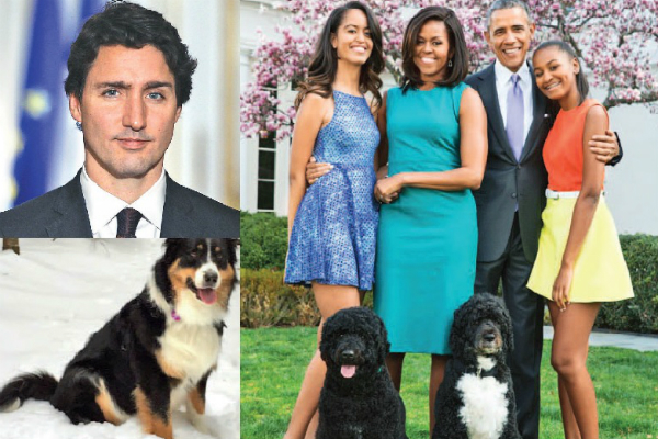 Presidential pooches
