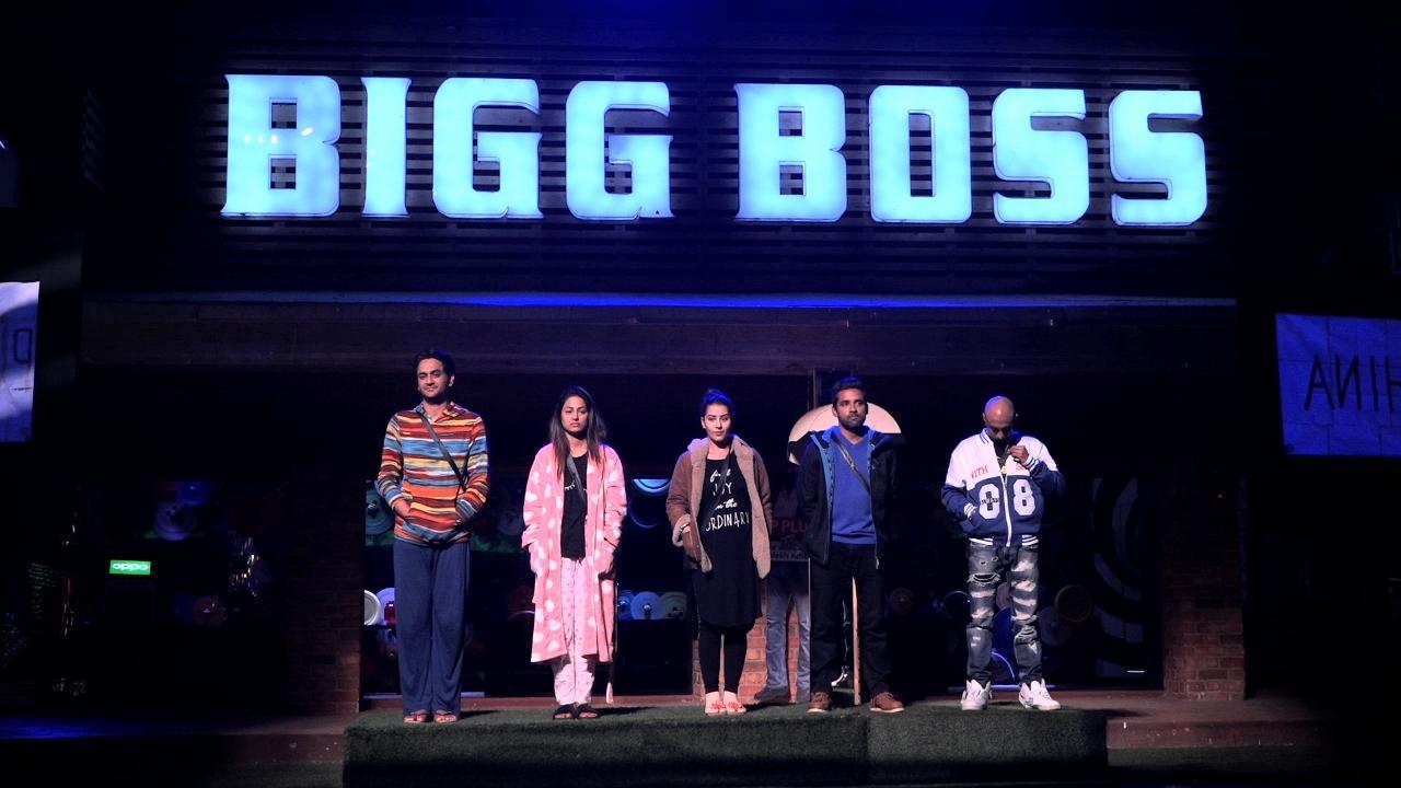 Top 5 contestants in Bigg Boss 11