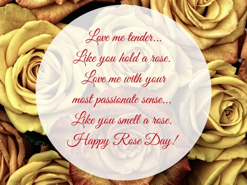 Happy Rose Day 60 Wishes Love Quotes SMS'es Whatsapp Status Adorable Photo Editor With Love Quote Adorable Download Lm
