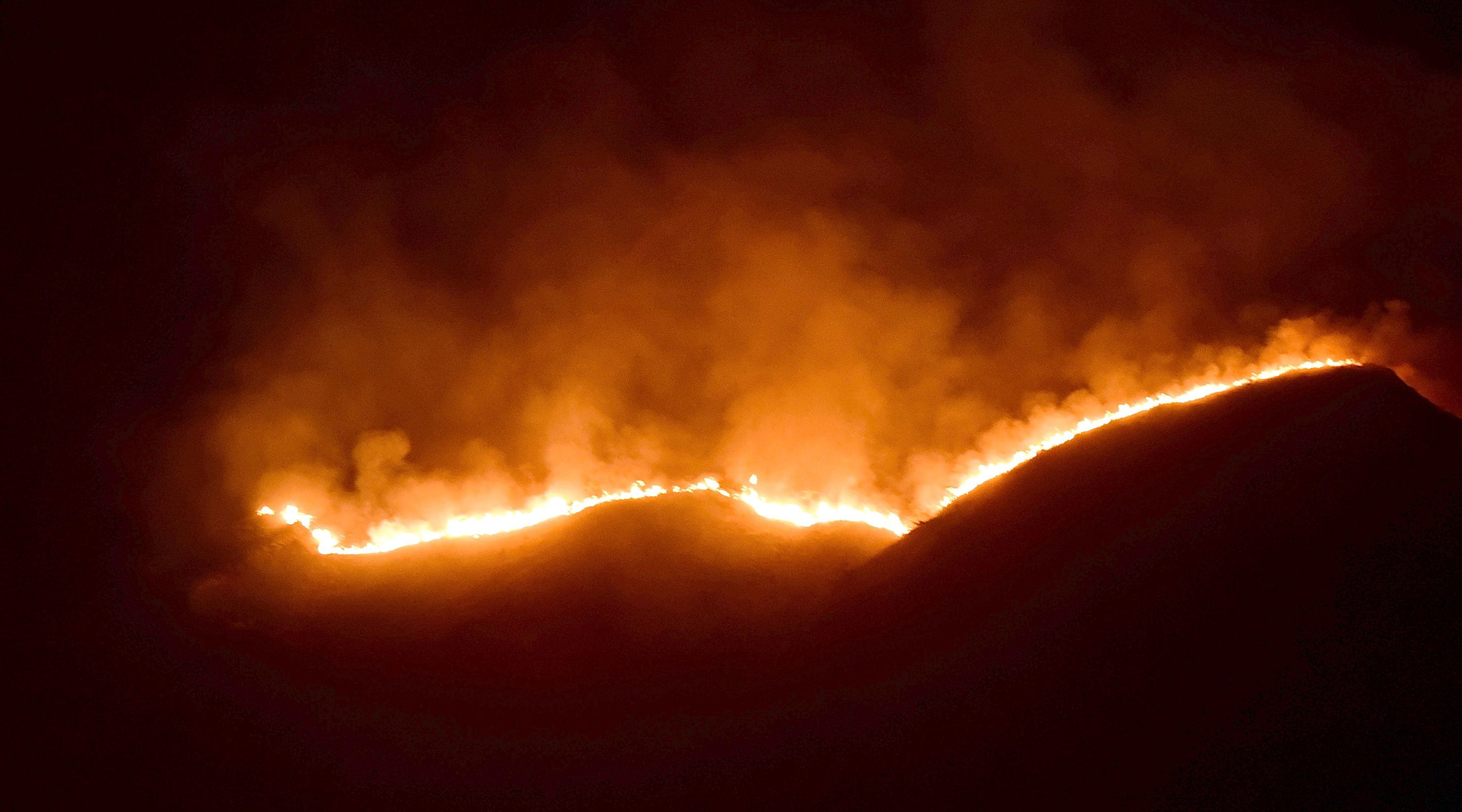 Forest fire engulfed a hill in Theni district, killing 11 trekkers. Photo: K Antony Xavier