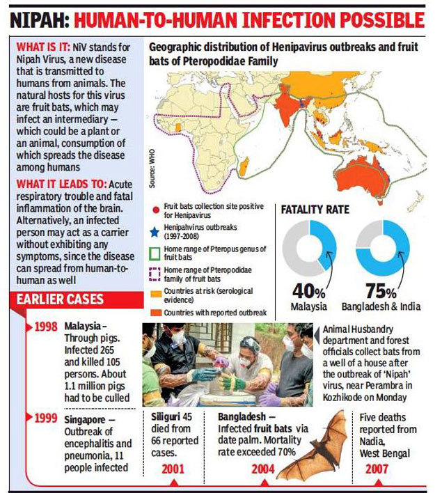 Viral News India: Nipah Virus: Kerala Nurse Taking Care Of Nipah Patients
