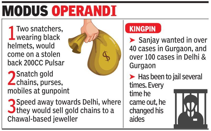 Snatchers who struck 40 times in 6 months held