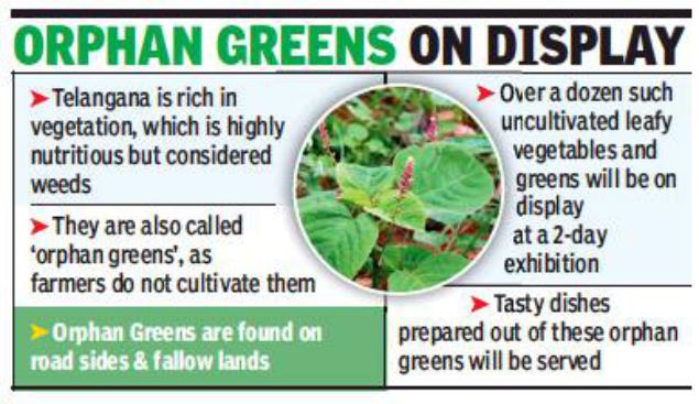 orphan greens