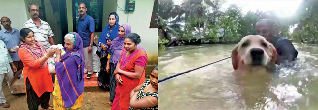 Bengaluru-based education consultant KM Jubeesh and his team are spending a month in the tribal areas of Wayanad, rebuilding homes & Chennai-based Dinesh Baba and his team rescued several animals in the state