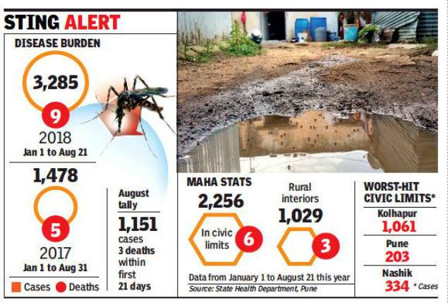 dengue maha
