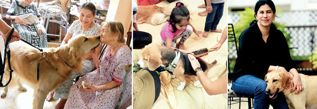 Parul Dalal's Golden Retriever, Leo, brings smiles to the faces of the residents of a nursing home for the elderly; A session of dog activity in progress at Pathfinders, a pre-school in Mumbai; Shirin Merchant and one of her therapy dogs Maya. Merchant trains dog owners to use their pets as therapy dogs