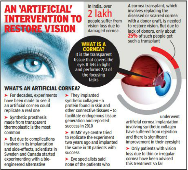 Bio Engineered Cornea May Be A Visionary Step In Gifting Sight