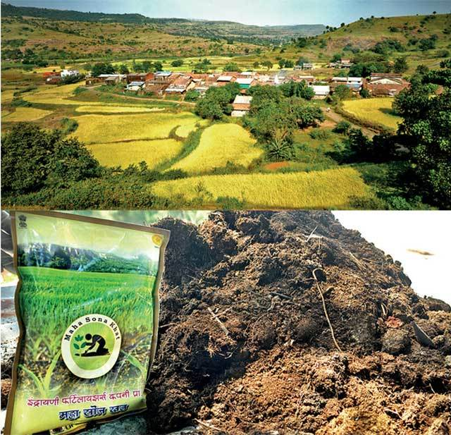 Moroshi village in Khed taluka is home to around 400 tribals (above); the standard packaging designed for the night soil in an attempt to create a brand