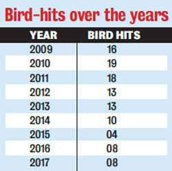 Bird-hits over the years