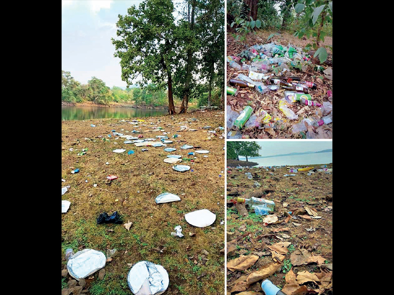 The state has woken up to the problem of increasing pollution at Tansa lake