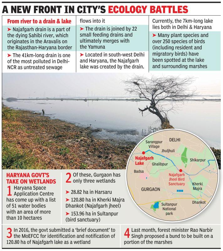 Najafgarh lake to be dammed? Alarm bells ring for wetland, flooding-prone city