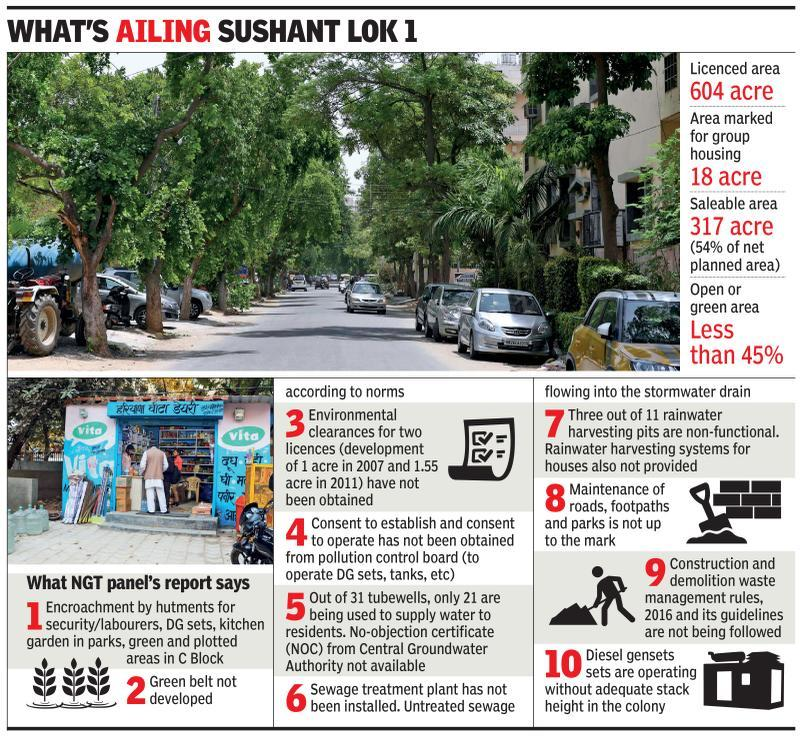 NGT panel's Sushant Lok report puts scanner on amenities, green areas