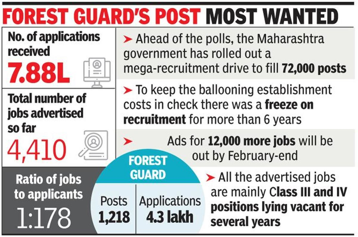 Better pay, scarcity of jobs fuelling race for govt posts