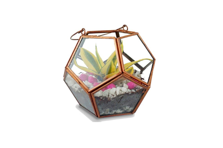 Grow herbs and vegetables in metal planters