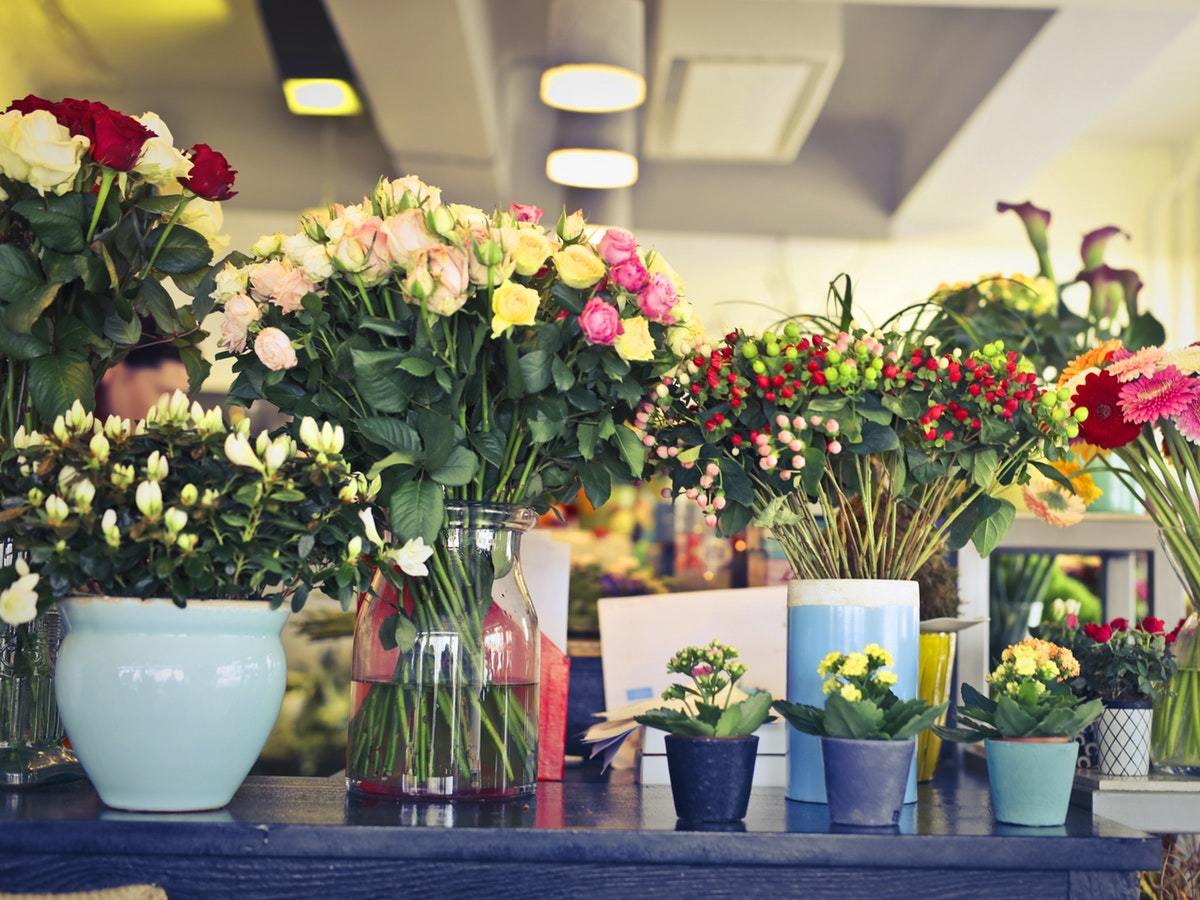 Flower arrangements to incorporate colour