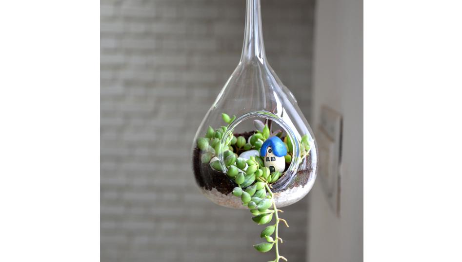 Hanging orb pear terrarium