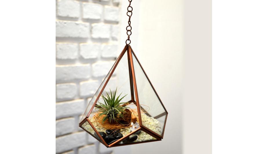 Hanging pyramidal terrarium