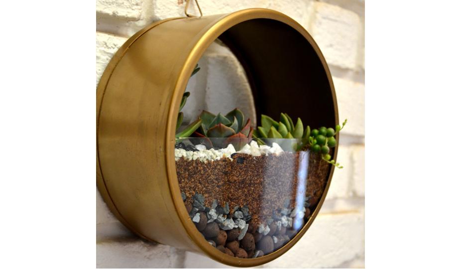 Wall mounting round terrarium