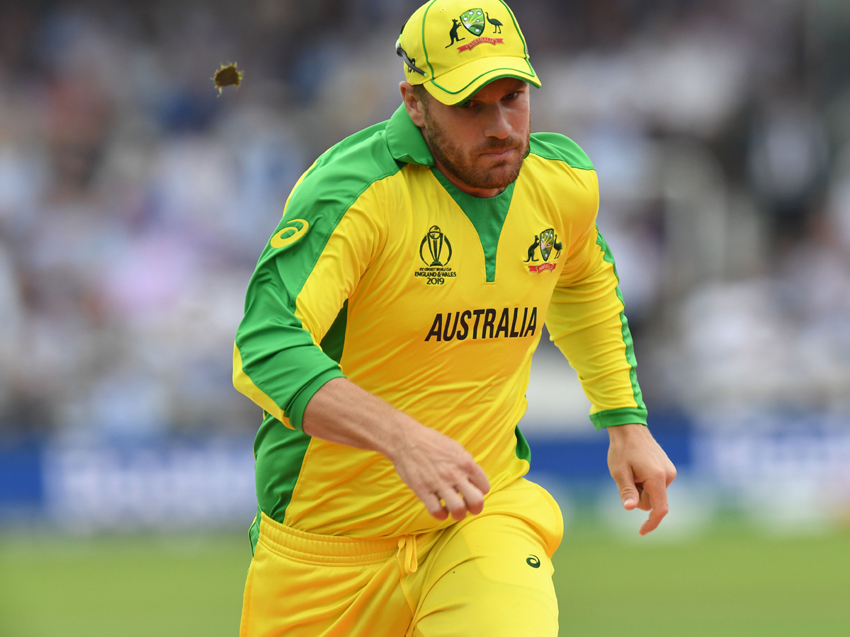 Finch-afp-WC