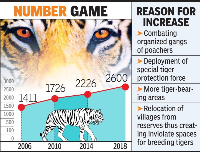 Over 2,600 tigers in country?