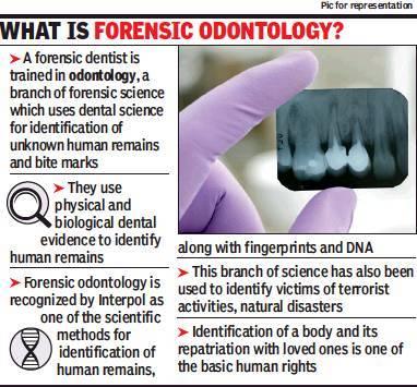 Mumbai S Kem Hospital S Dental Expert Helps Pune Cops Nab Kid S Killer Mumbai News Times Of India