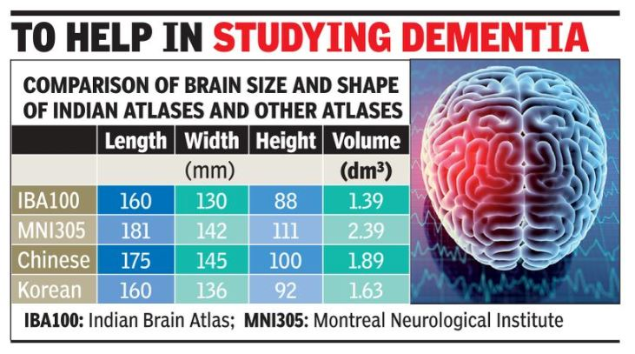 Brain info