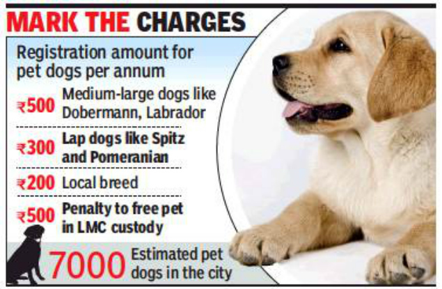 Lucknow Get Your Dog Registered Now To Avoid Detention Lucknow News Times Of India