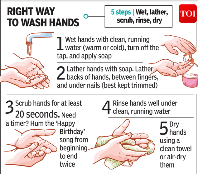 The safest bit washes hands-2