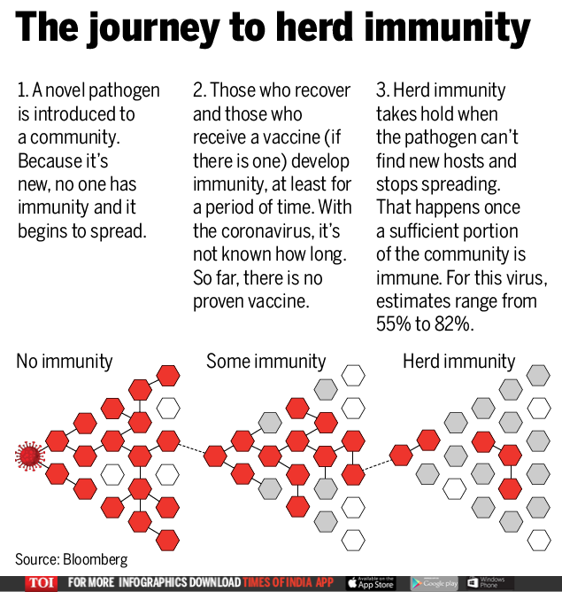 The journey to collective immunity (2)