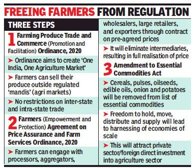 One India One Agriculture market: Cabinet clears ordinances to kick in agri reforms, create 'One India, One Agri-Market' | India News - Times of India