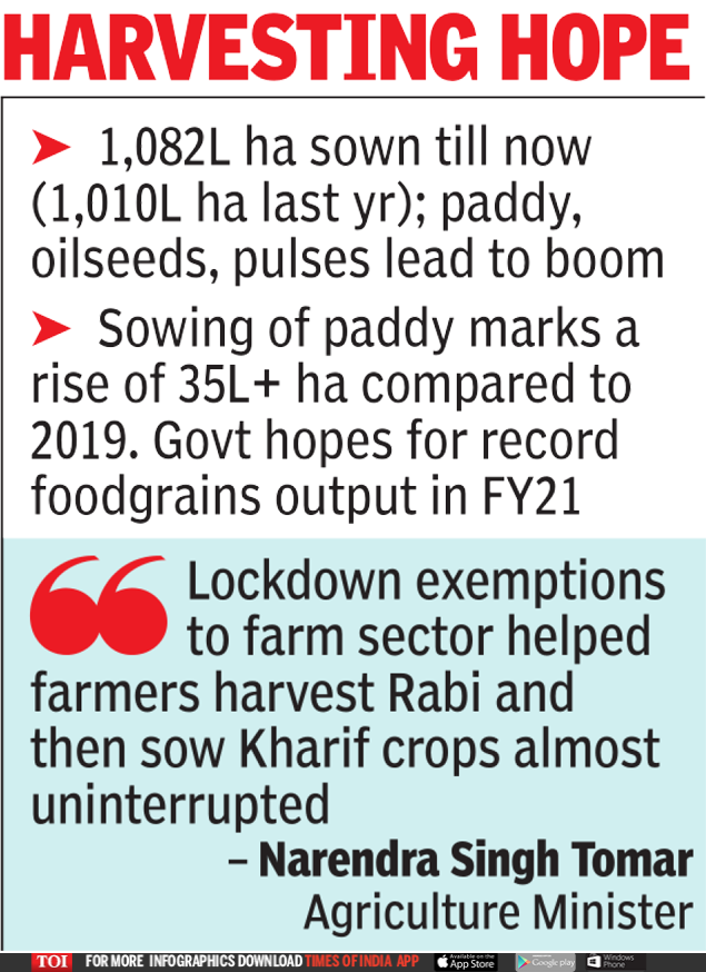 Good rainfall helps farm sector post record kharif crop acreage