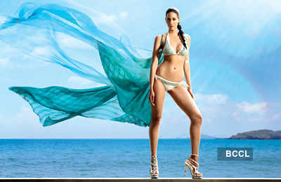 Kingfisher Calendar 2012