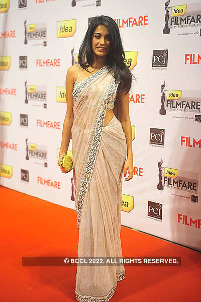 57th Idea Filmfare Awards 2011: Red Carpet