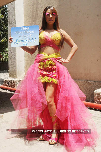 Pooja Misra shoots for 'PETA'