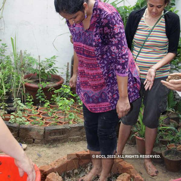 International Kitchen Garden Day celebration
