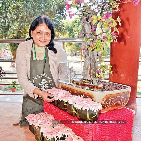 Avadh Bonsai Association's workshop
