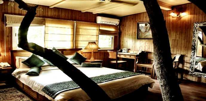 The Tree House Resort, Jaipur