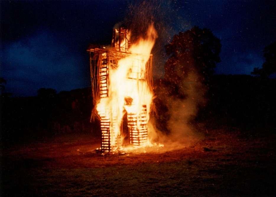 The Burning Man Festival