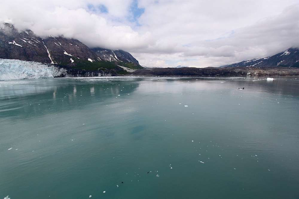 Grand Pacific and Margerie Glaciers