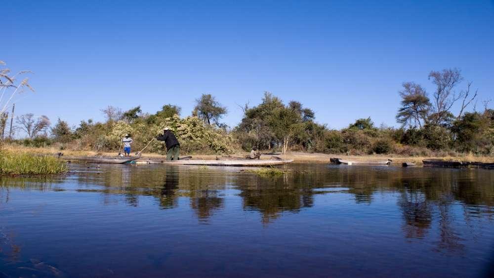 Biodiversity of the Okavango River Delta