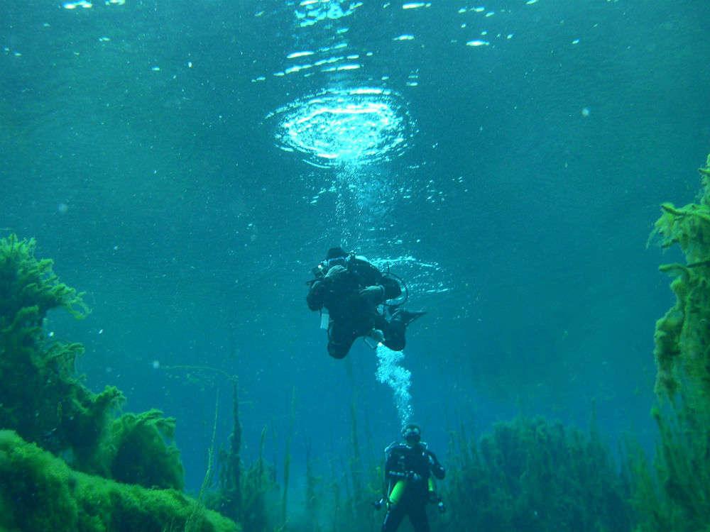 Cave diving under the Nullarbor Plain