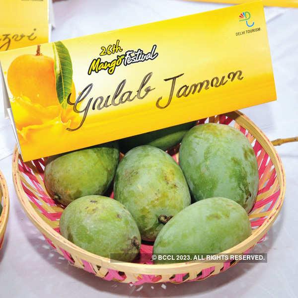 26th Mango Festival @ Dilli Haat