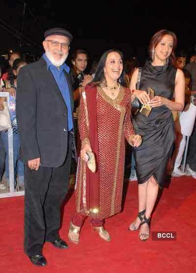Screen Awards: Red Carpet
