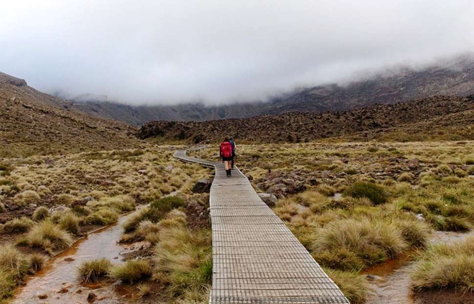 Guided adventure tours in New Zealand | Times of India Travel